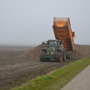 Suikerbieten transport